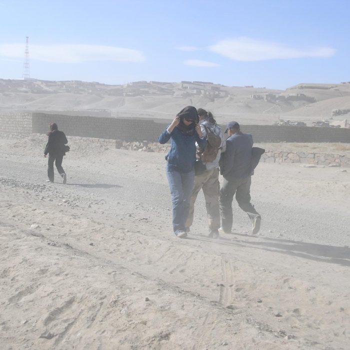 Toks yra afganis, bjaurus vėpūtinis